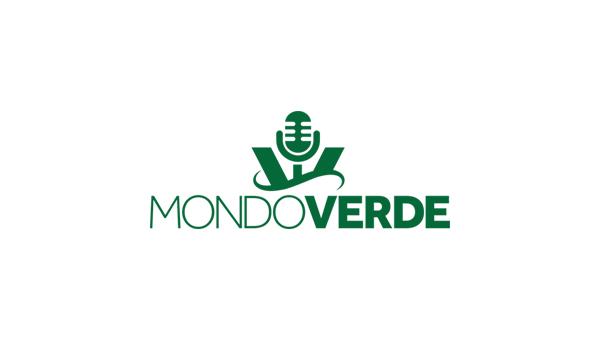 Terça-feira tem Palmeiras na Libertadores!